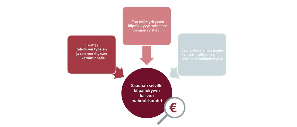 Kuva: Analyysi liiketoiminnan tuottavuudesta